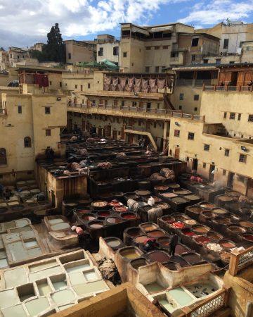 Fez Medina Tours